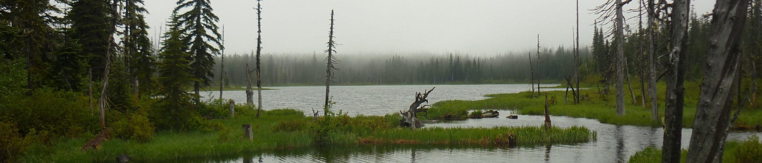 PNW Lake